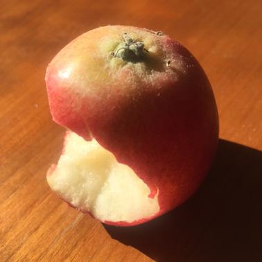 äpple med en tugga