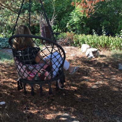 en hängande stol i ett träd