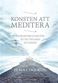 meditation bok